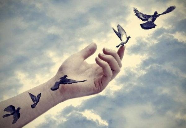 hand releasing birds