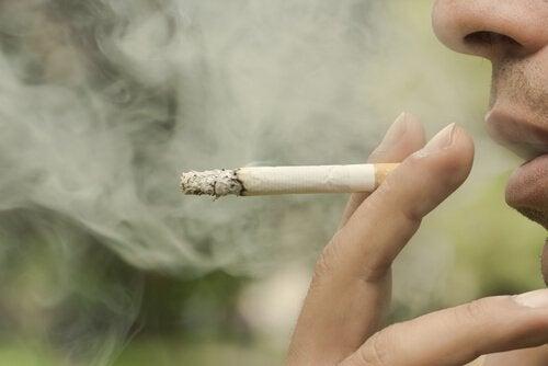 담배 연기