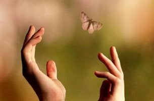 hands-trying-to-catch-a-butterfly