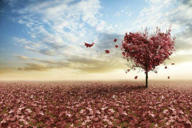 3 Reflections on Love by Erich Fromm