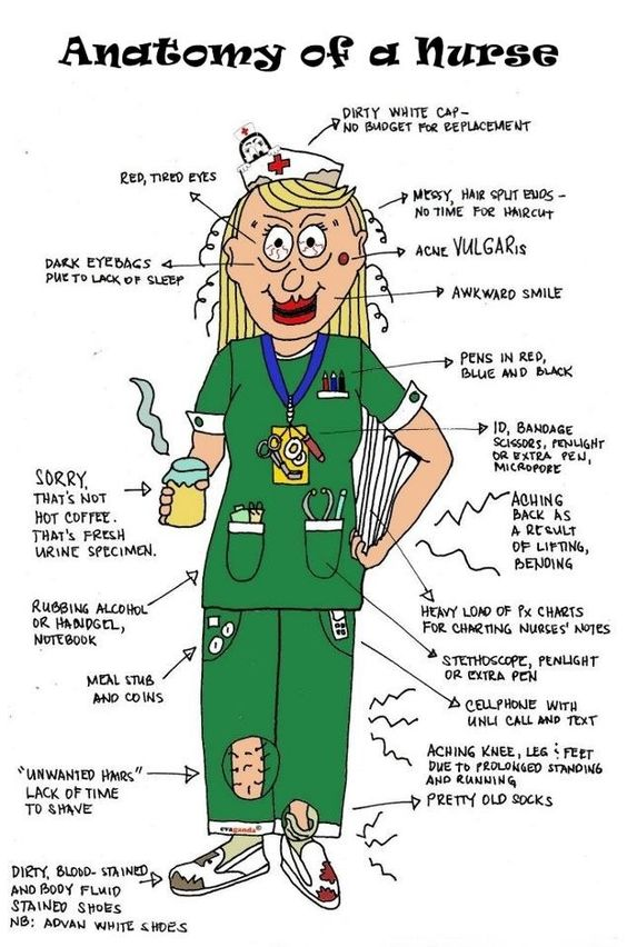 anatomy-of-a-nurse