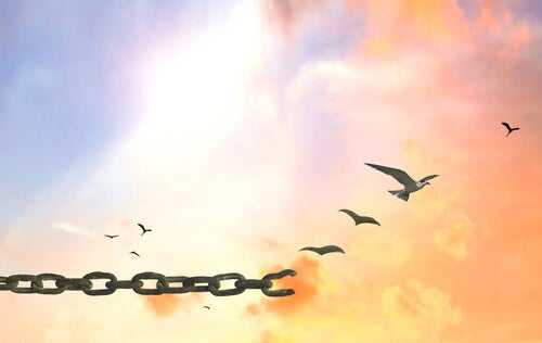 birds flying away from chain