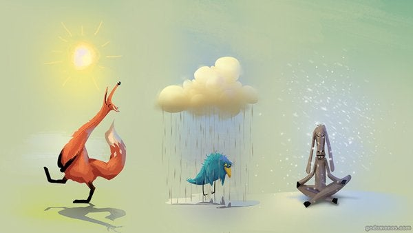 animals and weather
