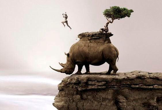 man jumping off rhino