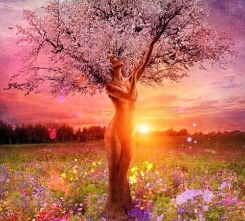 Woman Tree Flowering