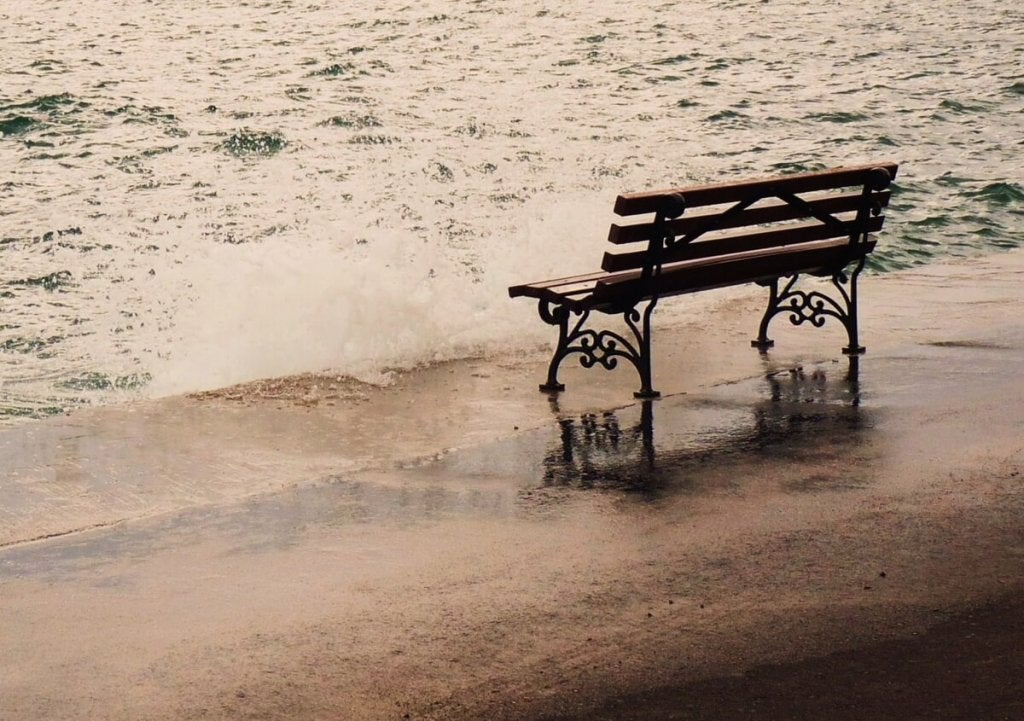 Bench by Sea