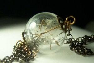 dandelion-in-a-glass-case