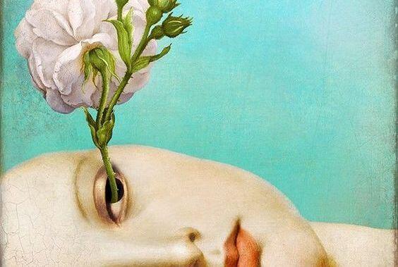남을 판단하는 데는 빠른 사람들: 눈에서 자라는 꽃