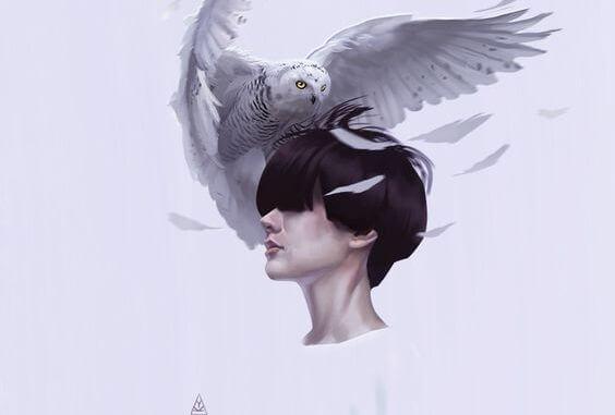 owl on head