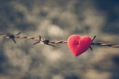 felt heart in barbed wire