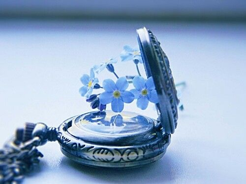 flower in a clock