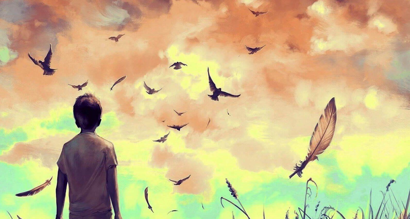 boy watching birds
