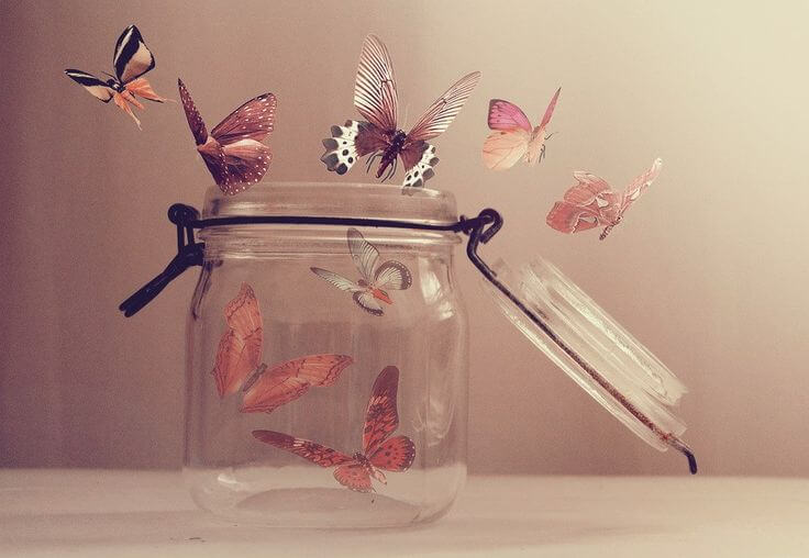 open jar full of butterflies
