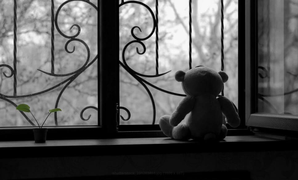 teddy bear on window sill