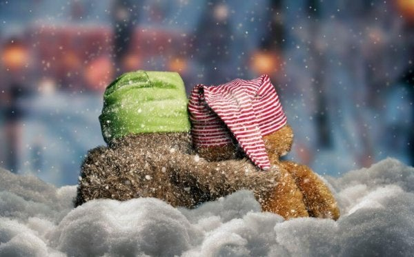 two stuffed animals in the snow