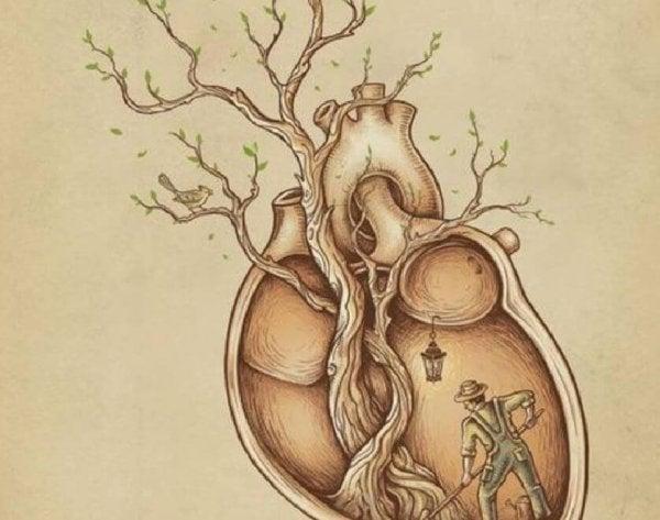 심장 나무