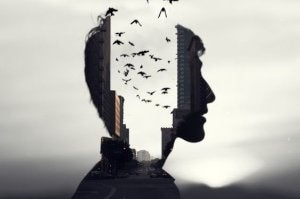 man with birds in his head