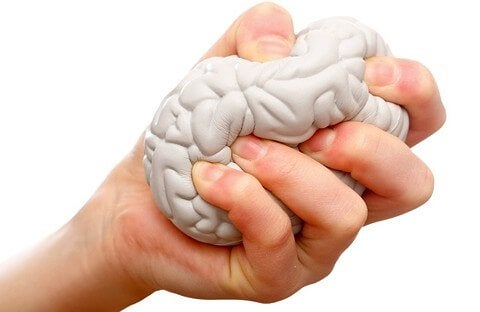 stress ball shaped like a brain