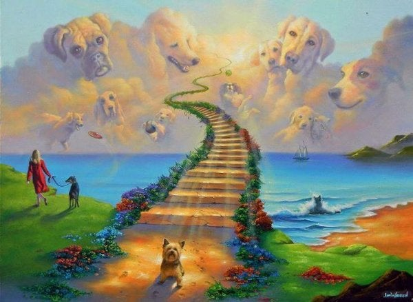 The Legend of Rainbow Bridge, the Resting Place for Our Pets