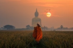 A Buddhist monk walking in the sunset