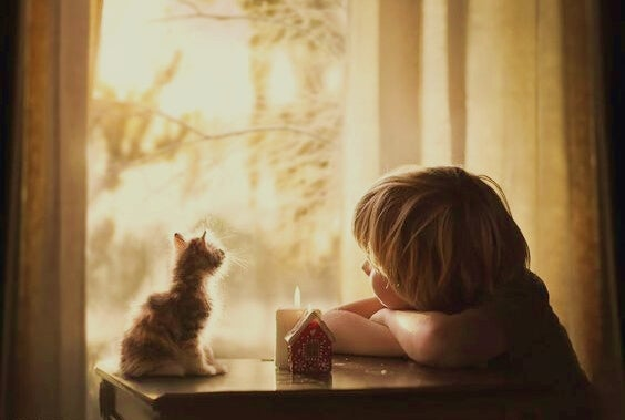 child and cat looking out window