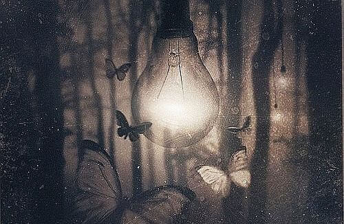 The light-bulb is being surrounded by many butterflies.