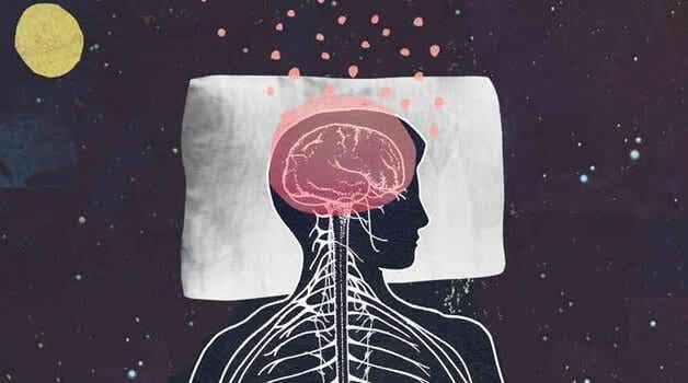 Melatonin Promotes Sleep and Youthfulness