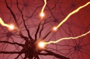 pleasure hormone serotonin synapse