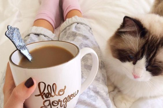 A woman drinking some coffee next to her pet cat.
