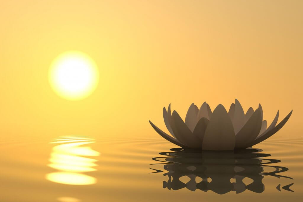 mindfulness, peace and tranquility