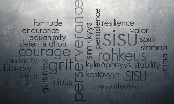 Sisu: perserverence, grit, courage, fortitude