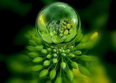 a bright green plant with a bubble