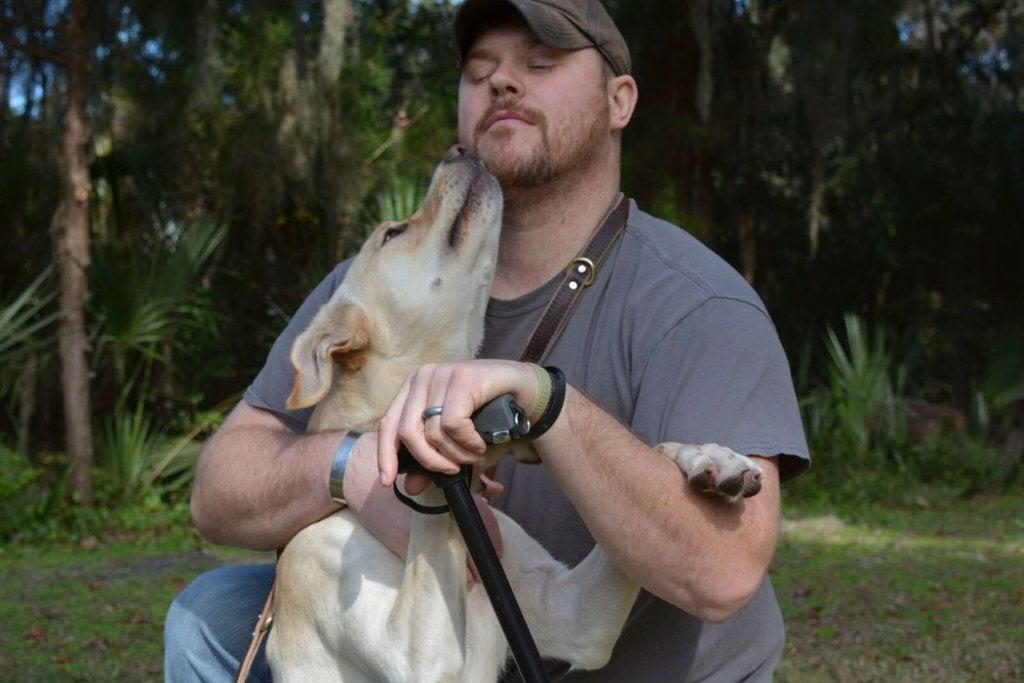 war veteran healing power in dogs