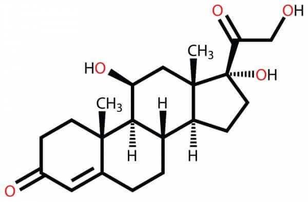 Związek chemiczny kortyzolu.