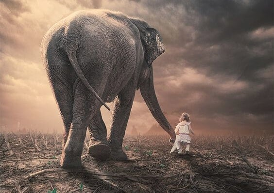 a little girl and elephant holding hands