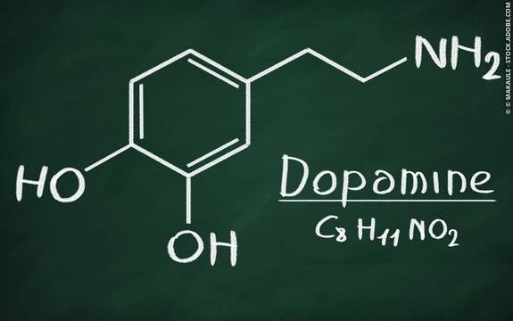 What is Dopamine and What Does it Do?