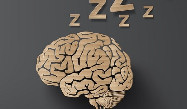 a brain sleeping