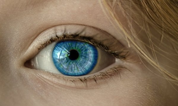 a close-up of a blue eye