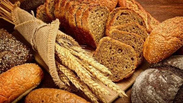 gluten: one of the worst foods for your brain