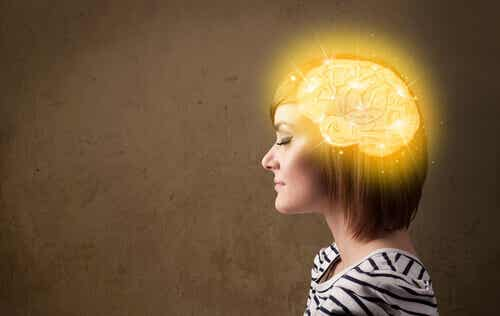 The Quantum Mind: How We Can Transform Our Reality