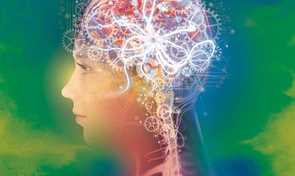 The inner workings and gears of an active brain