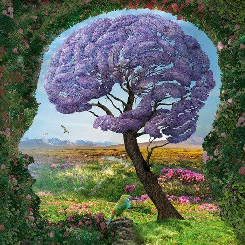 The Limbic System: What Is It and How Does It Work?