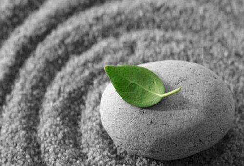 leave on stone
