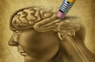 pencil erasing brain