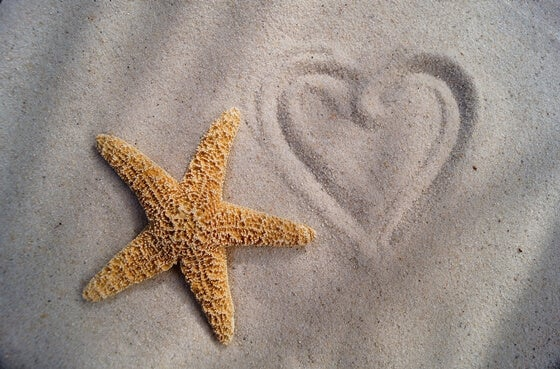 Starfish next to a heart drawn in the sand.