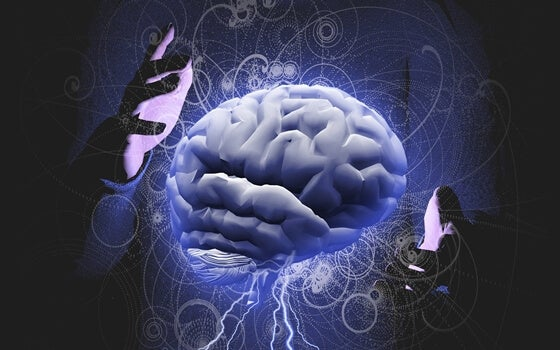 A pair of hands around a human brain.