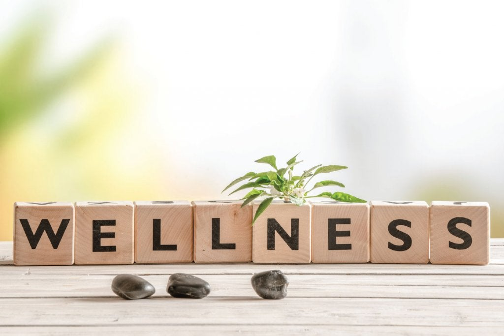 Block letters spelling out wellness.