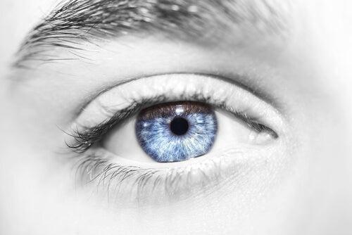'수평적 사고': 상황은 생각보다 단순할 수 있다 파란 눈
