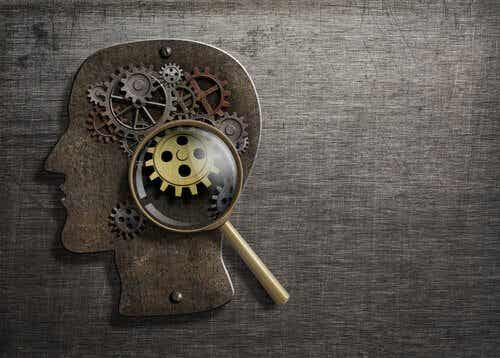 8 Basic Psychological Processes