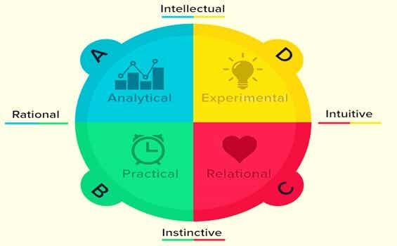 Brain Dominance According to the Herrmann Quadrants: What's Your Type?